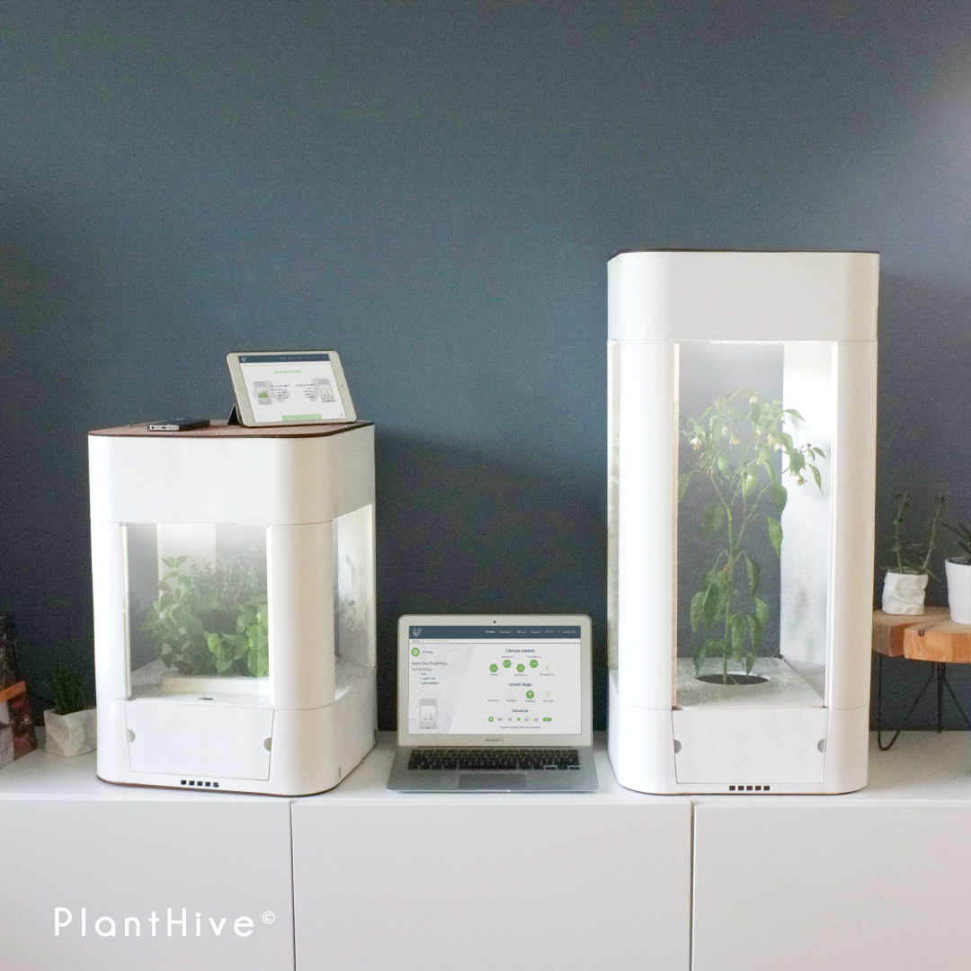 Planthive_smartgarden_growconnected_WMjune18_6insta